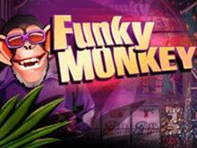 Виртуальный аппарат Funky Monkey