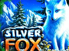 Игровой аппарат Silver Fox